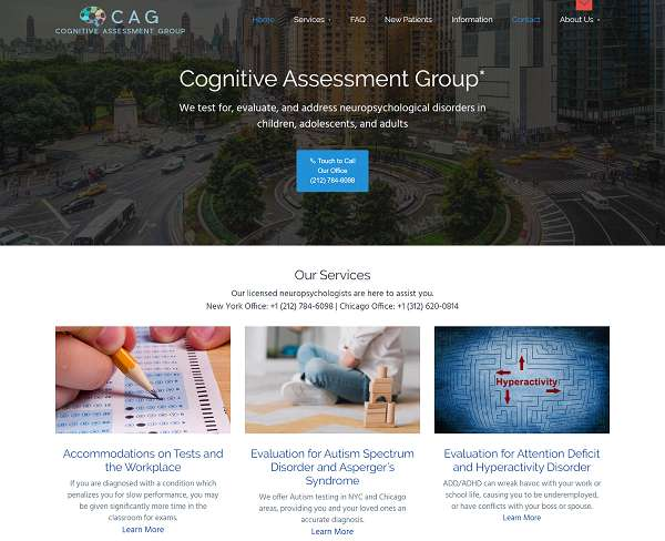 Cognitive Assessment website